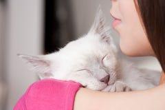 Красота брюнет с милым котенком Стоковое Изображение