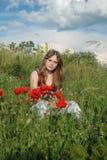Красота в поле 5 мака Стоковые Фото