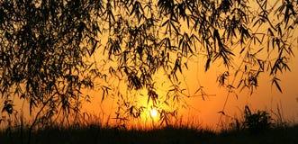 Красота захода солнца Стоковое Изображение RF