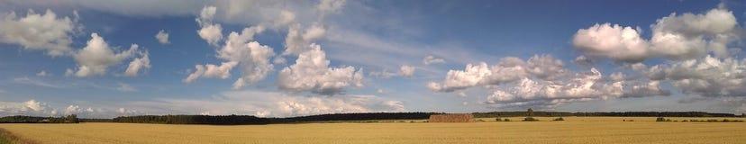 Красота земледелия в Литве Стоковое Изображение RF