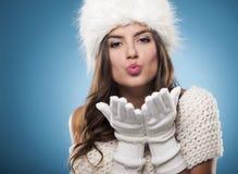 Красота зимы Стоковое Изображение RF