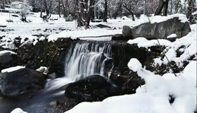 , красота зимы Стоковое Фото