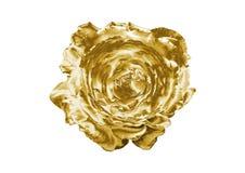 Красота золотое Роза иллюстрация штока