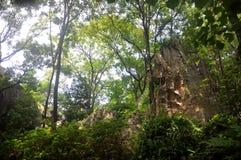 Красота каменного образования Стоковые Фото
