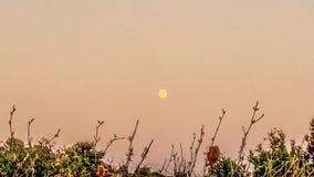 Красота луны стоковые изображения rf