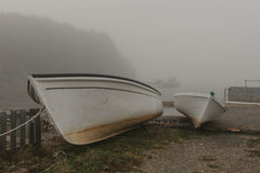 Красота Ньюфаундленд-Дувра Стоковое фото RF