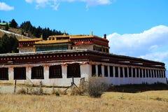 Красота осени плато Цинхая Тибета Стоковая Фотография