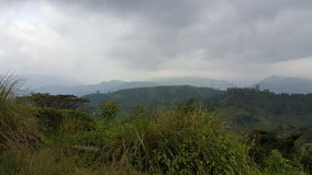 Красота поднимающей вверх страны в Шри-Ланке Стоковые Изображения RF