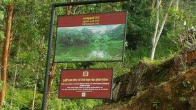 Красота поднимающей вверх страны в Шри-Ланке Стоковая Фотография
