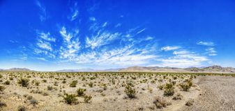 Красота пустыни Невады Стоковое Изображение RF