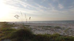 Красота пляжа в утре Стоковая Фотография