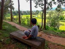Красота района риса PUA, провинции Nan стоковое изображение