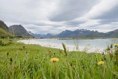 Красота северных гор и океана Норвегии Стоковая Фотография RF