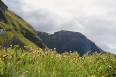 Красота северных гор Норвегии Стоковое фото RF