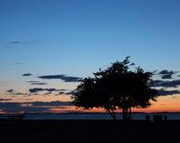 Красота темноты Стоковое Изображение