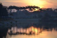 Красота утра Стоковые Изображения RF