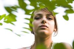 красотка за листьями Стоковое Фото
