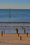 Красотка океана Стоковая Фотография