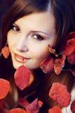 красотка осени Стоковая Фотография RF