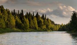 Красотка природы Стоковое Изображение