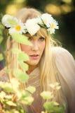 красотка цветет лето изображения фрактали Стоковые Изображения RF