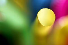 Красочная абстрактная предпосылка с влиянием нерезкости стоковое фото