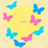 Красочная бабочка с круглым ярлыком Ard ¡ Ð Стоковые Изображения