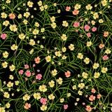 Красочная безшовная картина с экзотическими цветками Стоковая Фотография RF