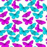 Красочная безшовная предпосылка от бабочки стоковые фото