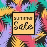 Красочная бирка летания для продажи с тропической картиной Стоковые Фотографии RF