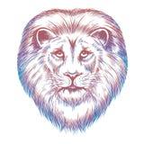 Красочная голова льва бесплатная иллюстрация