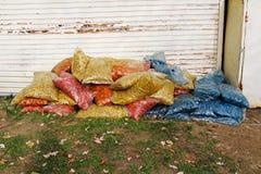 Красочная декоративная деревянная опилк Стоковая Фотография RF