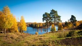 Красочная долина осени стоковое изображение