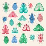 Красочная иллюстрация сумеречниц и жуков Собрание насекомых вектора идеальных для проектов искусства или печати зажима бесплатная иллюстрация
