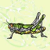 Красочная иллюстрация кузнечика 1 Стоковое фото RF