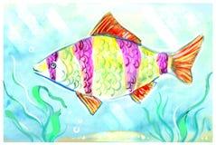 Красочная картина экзотической рыбы в танке Стоковая Фотография RF
