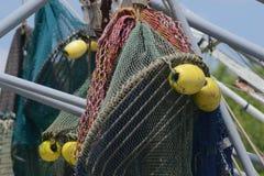 Красочная креветка ловит сетью крупный план Стоковые Фото