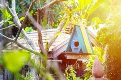 Красочная маленькая смертная казнь через повешение дома птицы на дереве в саде Стоковые Фото