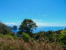 Красочная Новая Зеландия стоковое фото