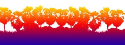 Красочная оранжевая голубая предпосылка силуэта ветви пальмы сахара строки, джунгли предпосылки ладони формы дерева, заход солнца Стоковые Изображения