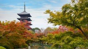 Красочная осень на виске Toji в Киото Стоковая Фотография RF