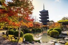 Красочная осень на виске Toji, Киото Стоковое Изображение