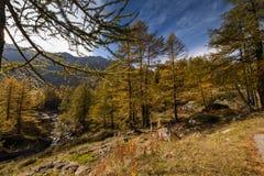 Красочная осень на швейцарских горных вершинах на пропуске Simplon стоковое изображение