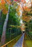 Красочная осень на Koto-в виске в Киото Стоковое Изображение RF