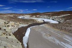 Красочная долина в андийских горах, Боливия Salt River Стоковое Изображение RF