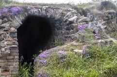 Красочная пещера Стоковые Изображения RF