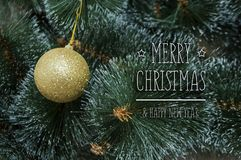 Красочная предпосылка с украшенной рождественской елкой Стоковое фото RF