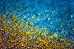Красочная предпосылка конспекта воды Стоковая Фотография
