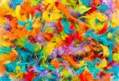 Красочная предпосылка ярких покрашенных пер Стоковая Фотография