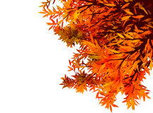 Красочная предпосылка autum с листьями Стоковое Изображение